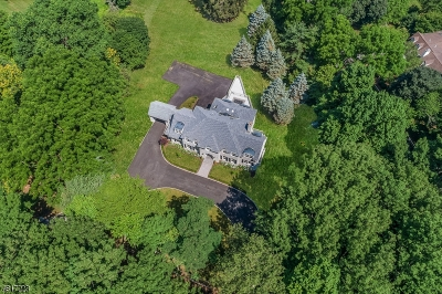Mendham Boro, Mendham Twp. Single Family Home For Sale: 600 Cherry Ln