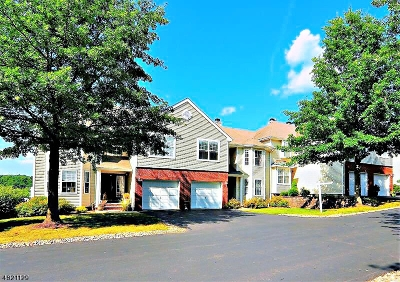 Clinton Twp. Condo/Townhouse For Sale: 14 Shackamaxon Ter