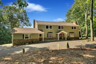 Tewksbury Twp. Single Family Home For Sale: 12 Ridge Rd