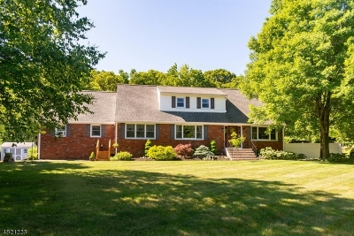 Sparta Twp. NJ Single Family Home For Sale: $439,900