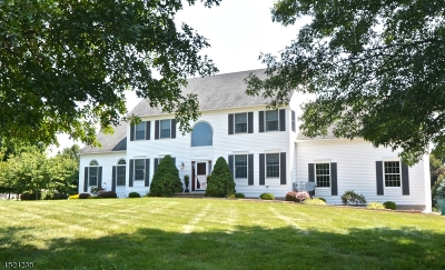 Raritan Twp. Single Family Home For Sale: 8 Homestead Pl