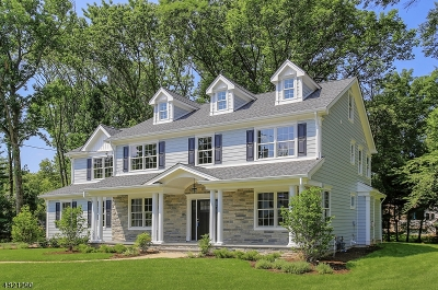 Westfield Town NJ Single Family Home For Sale: $1,588,000
