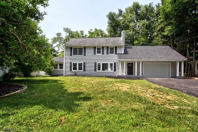 Mendham Boro, Mendham Twp. Single Family Home For Sale: 10 Tingley Rd