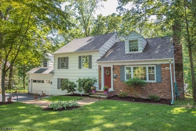 Mountain Lakes Boro Single Family Home For Sale: 026 Crane Rd