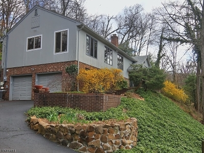 Bedminster Twp., Bridgewater Twp., Bernards Twp., Raritan Boro Rental For Rent: 73 Twin Oaks Rd.