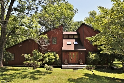 Montgomery Twp. Single Family Home For Sale: 37 E Ridge Rd