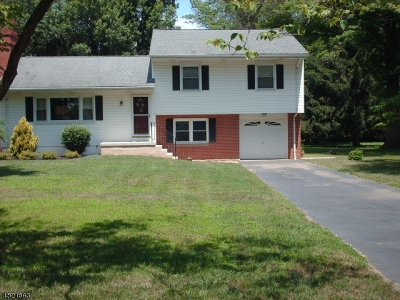 Montgomery Twp. Single Family Home For Sale: 940 Route 518