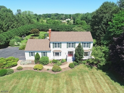 Alexandria Twp., Frenchtown Boro Single Family Home For Sale: 270 Hickory Corner Rd