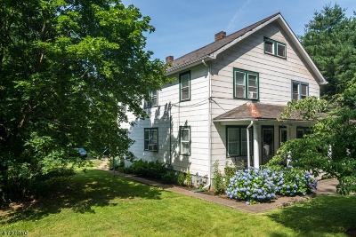 Alexandria Twp. Single Family Home For Sale: 546 Milford-Frenchtown Rd