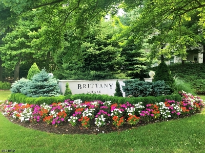 Wayne Twp. Condo/Townhouse For Sale: 1210 Brittany Dr #1210