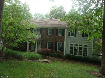 Mendham Boro, Mendham Twp. Single Family Home For Sale: 22 Saddle Hill Rd