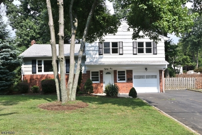 Fanwood Boro Single Family Home For Sale: 81 Shady Ln