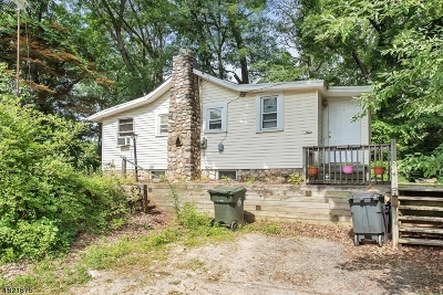 Mount Olive Twp. Single Family Home For Sale: 9 Birchwood Dr