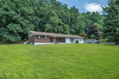 Lebanon Twp. Single Family Home For Sale: 44 Hollow Rd