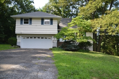 Hawthorne Boro NJ Single Family Home For Sale: $489,900