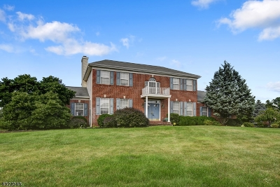 Franklin Twp. Single Family Home For Sale: 20 Grist Mill Ln