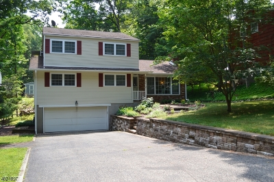 Byram Twp. Single Family Home For Sale: 31 S Crescent Dr