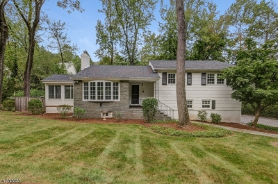 Morristown Town, Morris Twp. Single Family Home For Sale: 18 Brookfield Way