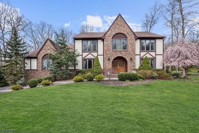 Morris Twp. Single Family Home For Sale: 15 Manette Rd