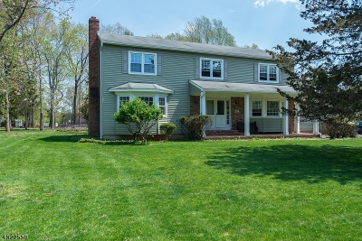 Hillsborough Twp. Single Family Home For Sale: 14 Stagecoach Way