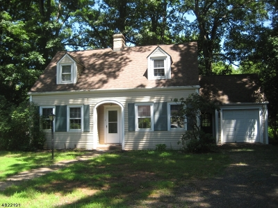 Montgomery Twp. Single Family Home For Sale: 1733 Route 206