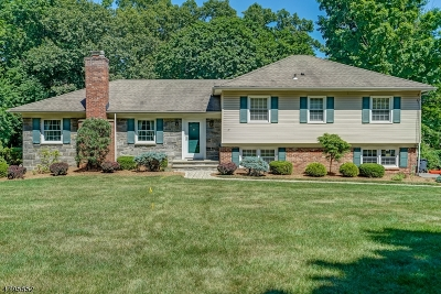 Morris Twp. Single Family Home For Sale: 52 Normandy Heights Rd