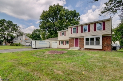 Piscataway Twp. Single Family Home For Sale: 21 Wagner Ave