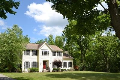 Glen Gardner Boro, Hampton Boro Single Family Home For Sale: 29 Bell Ave