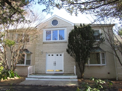 Montgomery Twp. Single Family Home For Sale: 34 Berkley Ave