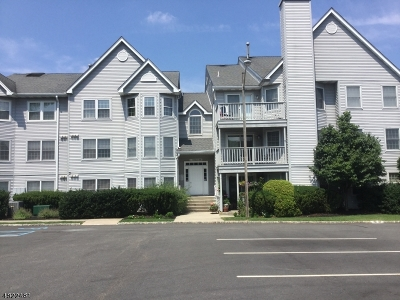 Paterson City Condo/Townhouse For Sale: 3 Boulder Run