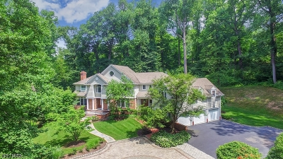Bernardsville Boro NJ Single Family Home For Sale: $1,350,000