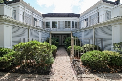 Chatham Twp. NJ Rental For Rent: $3,600