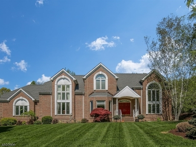 Chester Single Family Home For Sale: 32 Beacon Hill Dr
