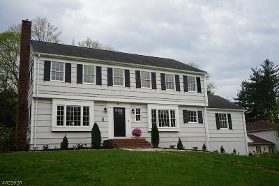 Morris Twp. Single Family Home For Sale: 8 Bradwahl Dr