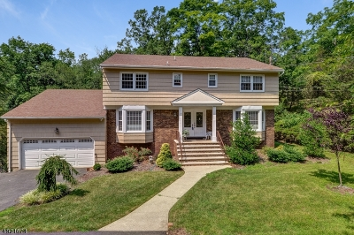 Montville Twp. Single Family Home For Sale: 51 Foremost Mt Rd