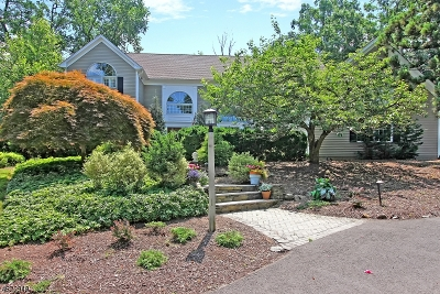 Bridgewater Twp. NJ Single Family Home For Sale: $979,000