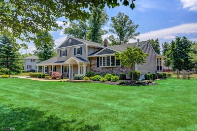 Montgomery Twp. Single Family Home For Sale: 59 Sleepy Hollow Ln