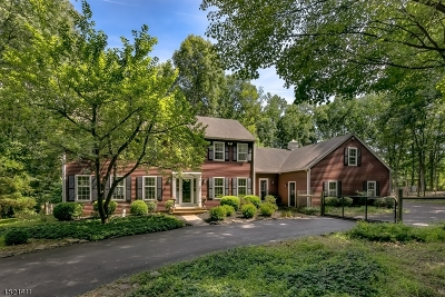 Franklin Twp. Single Family Home For Sale: 14 Pine Hill Rd