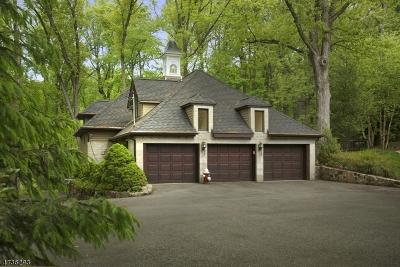 Morris Twp. NJ Rental For Rent: $2,350