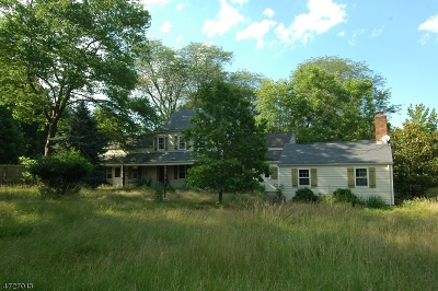 Readington Twp. Single Family Home For Sale: 602 County Route 523