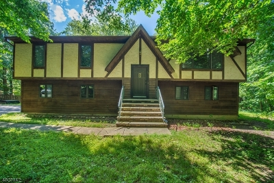 Parsippany-Troy Hills Twp. Single Family Home For Sale: 111 Red Gate Rd