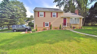 Morris County Single Family Home For Sale: 4 Alan Ct