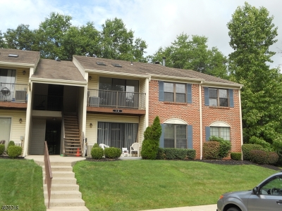 Bernards Twp. Condo/Townhouse For Sale: 10 Baldwin Ct