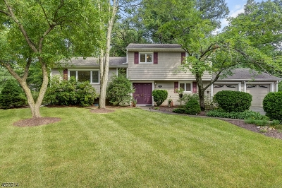 Livingston Twp. Single Family Home For Sale: 96 Falcon Rd