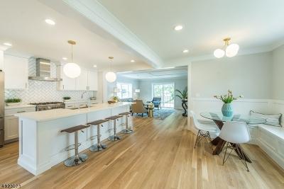 Chatham Boro Single Family Home For Sale: 7 Vine St