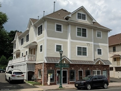 Berkeley Heights Condo/Townhouse For Sale: 459a Springfield Ave