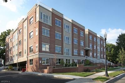 Morristown Town NJ Rental For Rent: $2,850