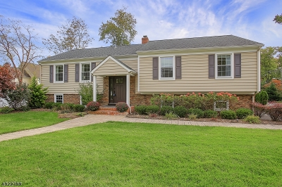 Westfield Town Single Family Home For Sale: 16 Burgess Ct
