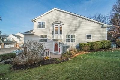 Denville Twp. NJ Rental For Rent: $2,700
