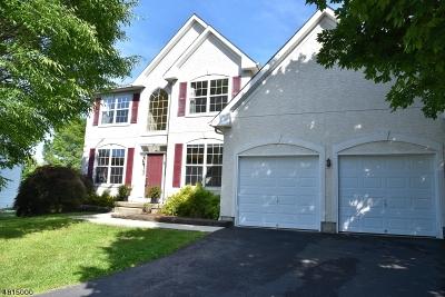 Montgomery Twp. NJ Rental For Rent: $3,600